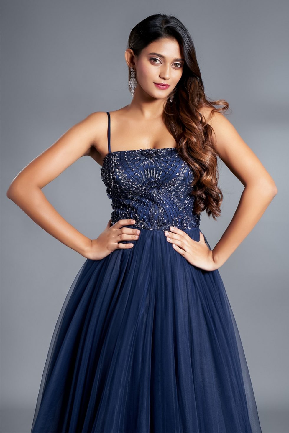 Navy blue classic tulle gown with a hand embroidered bodice and silver details.